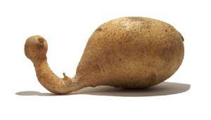 Potato-Mutato.